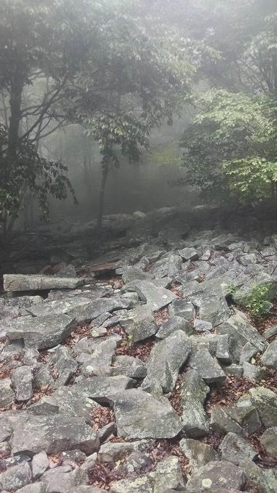 Oh so many rocks