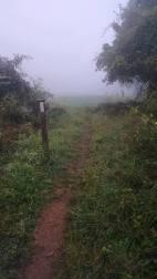 Love Virginia's trail