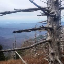 Smoky Mountains - Thanks www.erikbarstow.com!