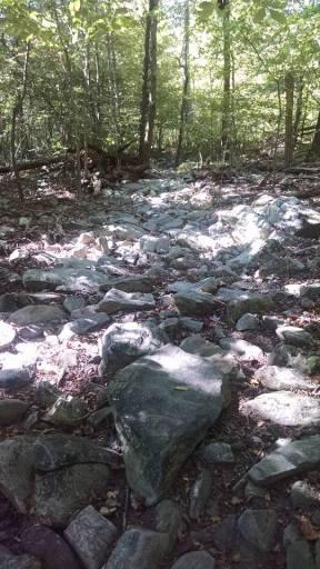 Still some rocks
