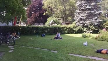 Mr. Levardi's lawn