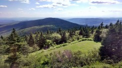 View from Bascom Lodge bunkroom