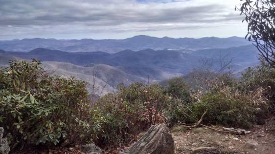 View from Albert